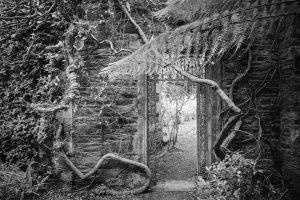 Garten auf Garinish Island, County Kerry, Irland
